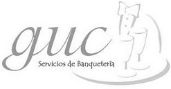 Garzones Universitarios Curicó